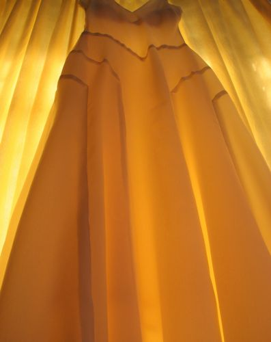 The light shining through the dress shows how perfect the seam finish was.