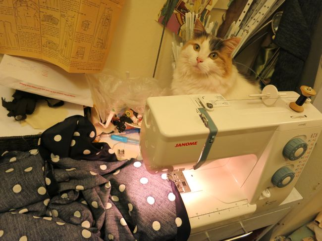Felicity and the sewing machine