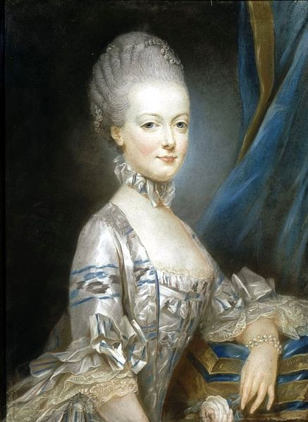 Marie Antoinette in a dress of chiné a la branche, at the age of thirteen; by Joseph Ducreux (1769)