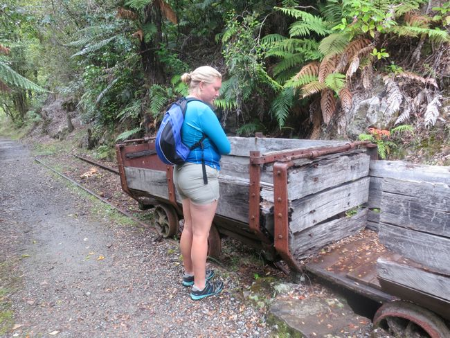Coal carts, Charming Creek walkway, West Coast, New Zealand