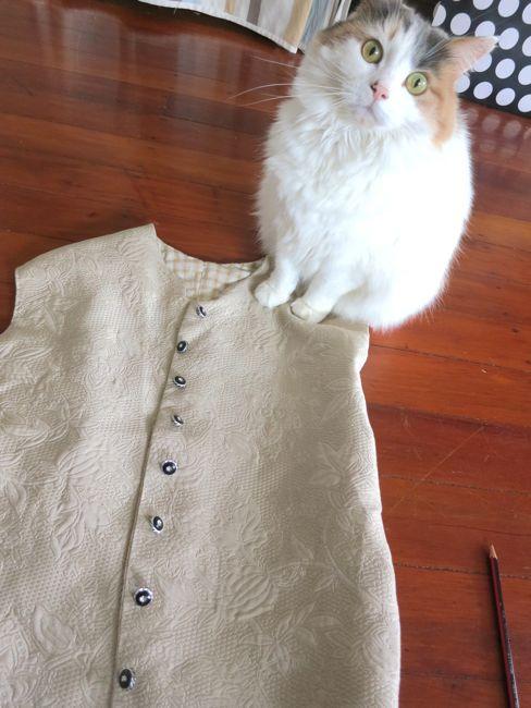 18th century man's waistcoat thedreamstress.com