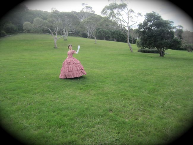 1850s raspberry swirl ball dress thedreamstress.com