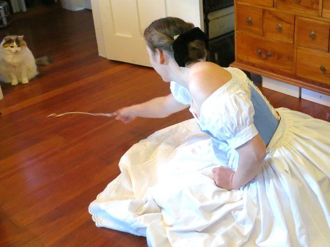 1860s paisley petticoat thedreamstress.com