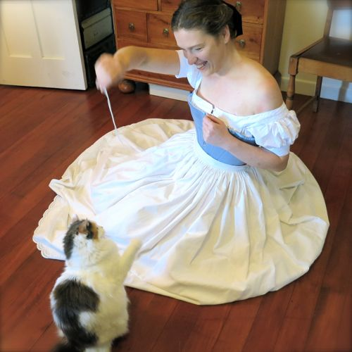 1860s paisley petticoat (& Felicity the cat) thedreamstress.com
