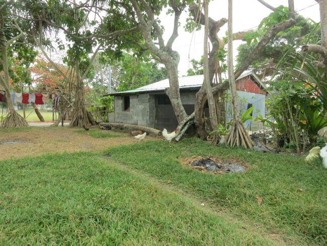 Travels in Vanuatu, thedreamstress.com
