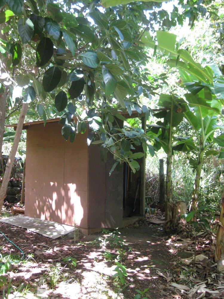 An outhouse on my parent's farm