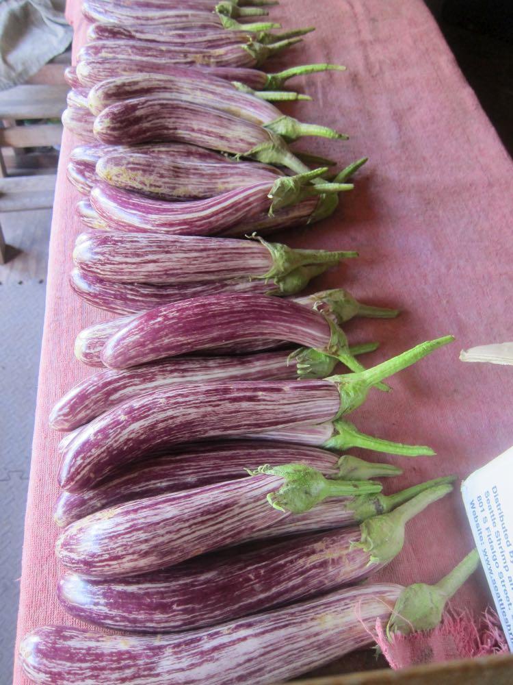 Eggplant, Molokai, Hawaii, thedreamstress.com