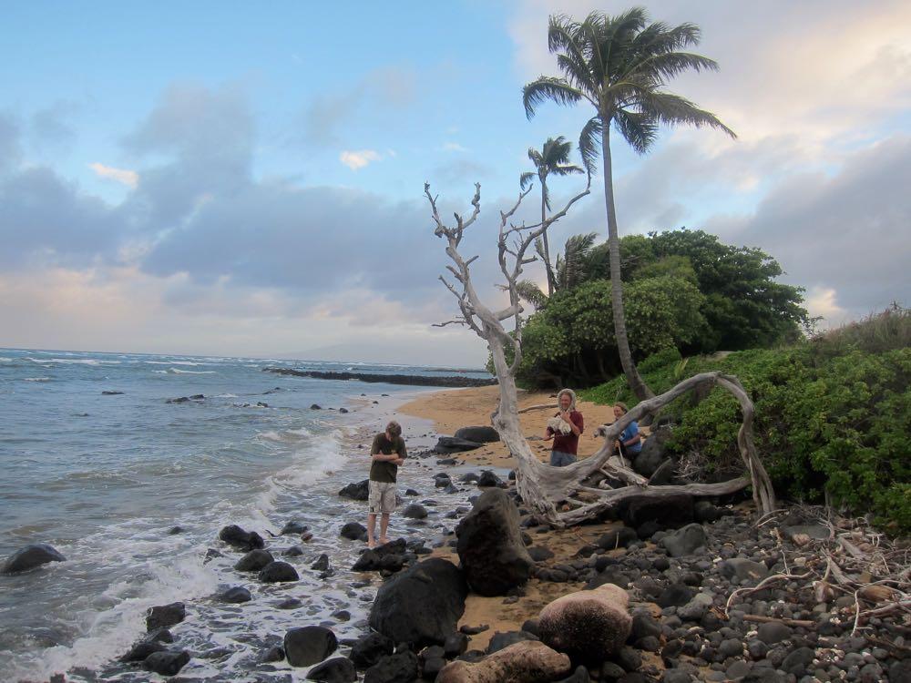 Beach, Molokai, Hawaii thedreamstress.com