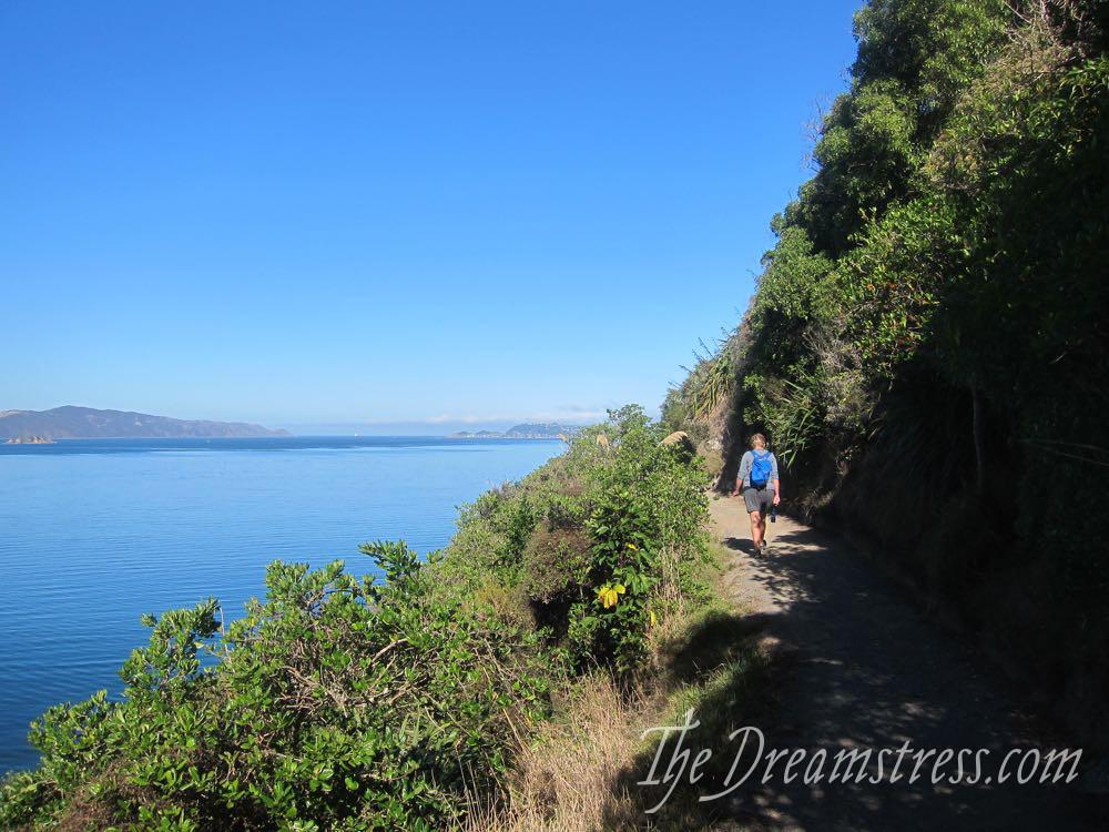 Matiu Somes Island, Wellington NZ, thedreamstress.com