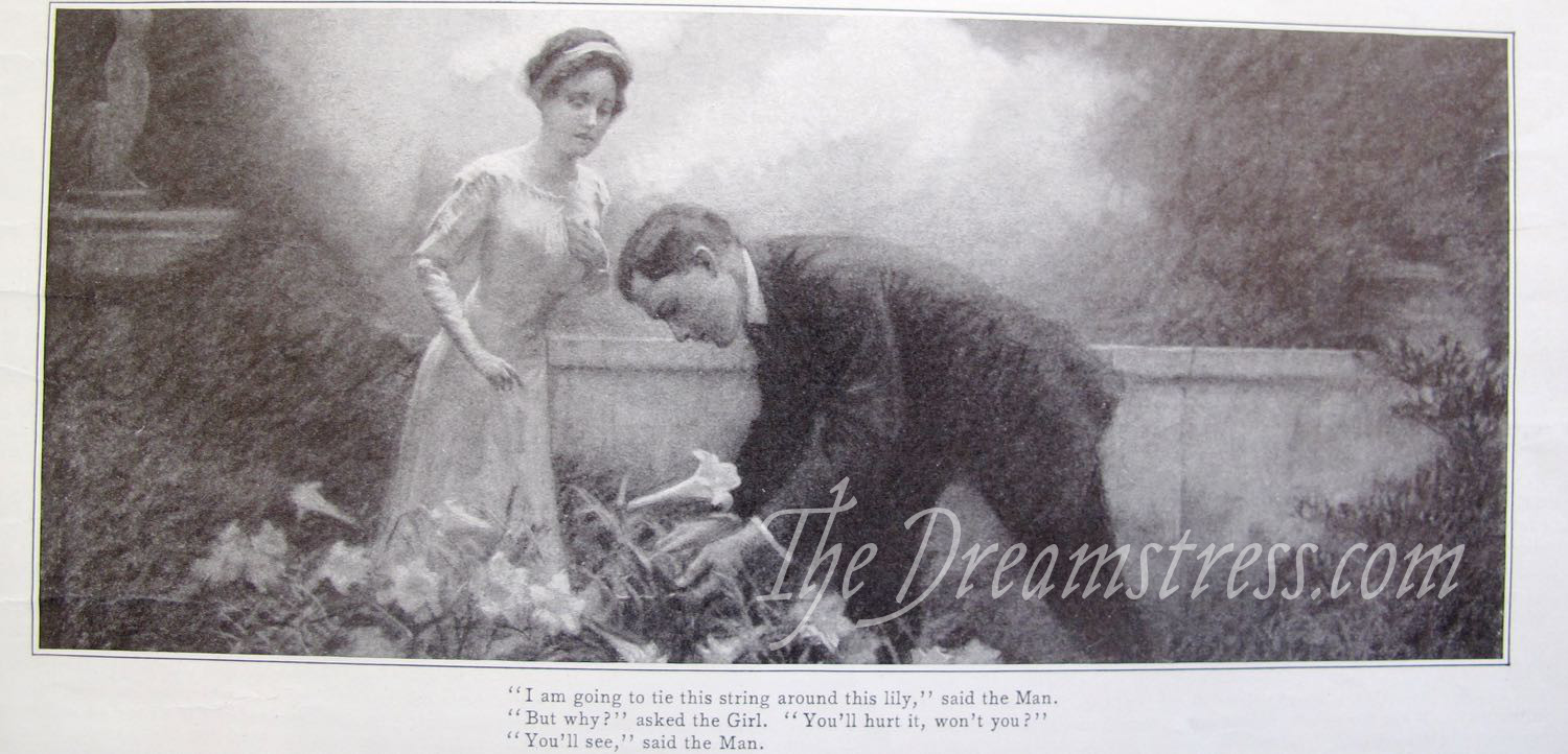 Ladies Home Journal, June 1910 thedreamstress.com