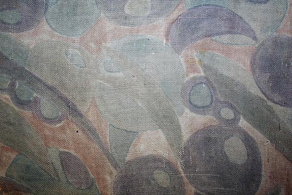 Dress, detail of tussah silk fabric, Raymond Duncan (American, San Francisco, California 1874–1966 Cavalaire), 1920s, American, silk, Metropolitan Museum of Art, 990.152
