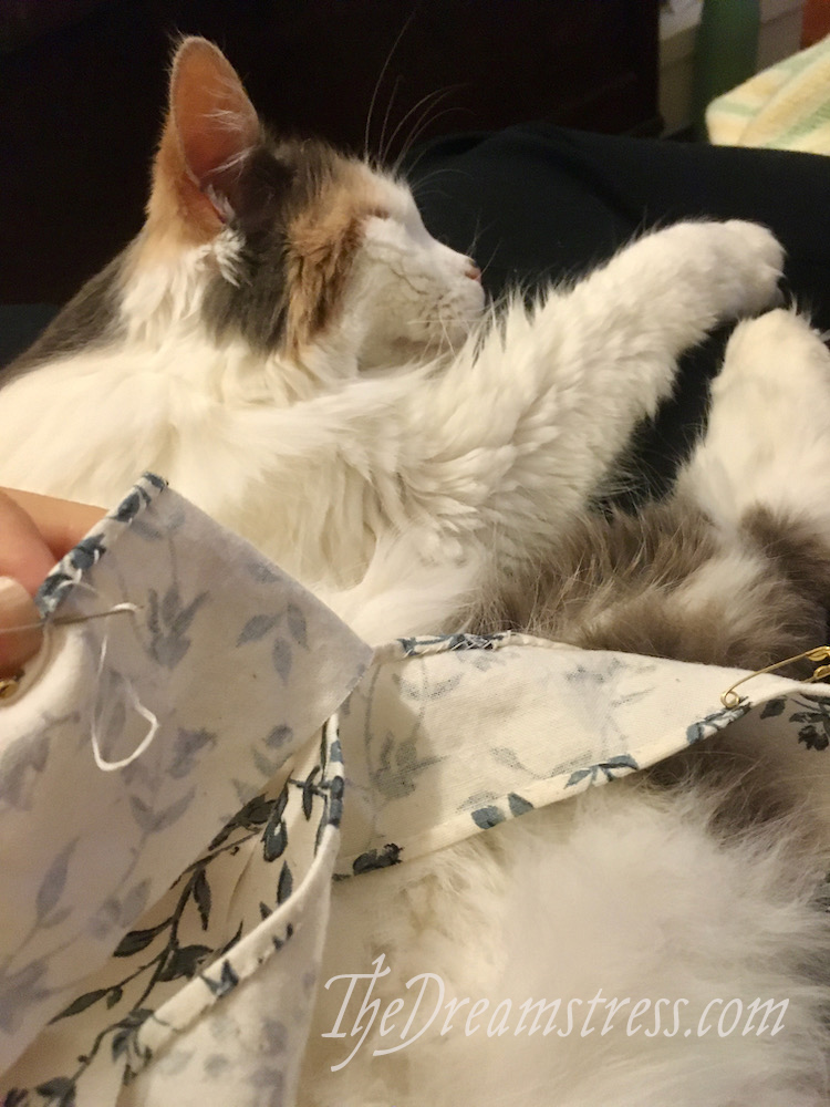 A calico cat sleeping on a lap, with handsewing in the foreground.